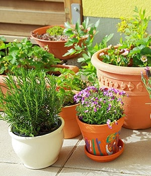 5. Find suitable containers