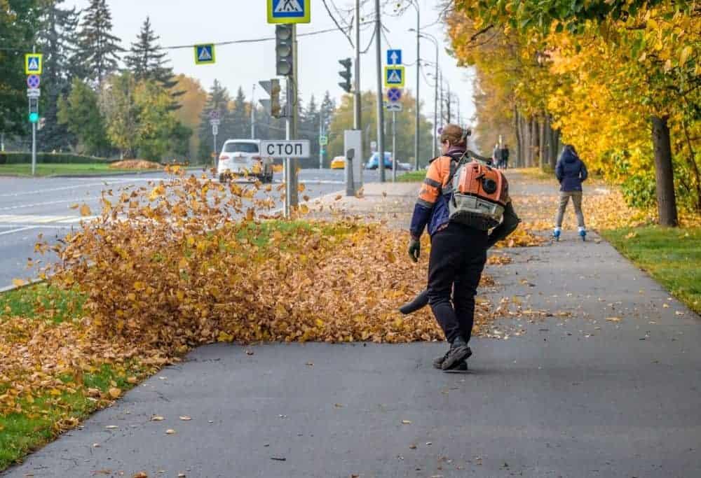 best walk behind leaf blower