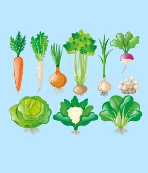 16Consider what vegetables are available