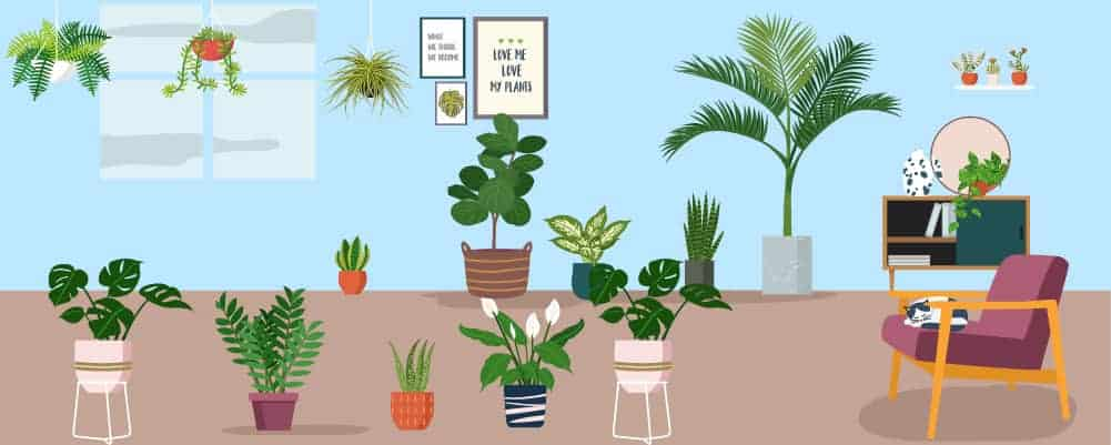 17 Conclusion - You should ready create the perfect garden setup.