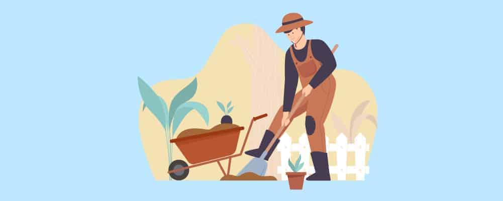 4 Work the soil