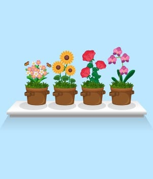 4Annuals such as cosmos, sunflowers, marigolds and impatiens